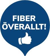 Fiber_overallt